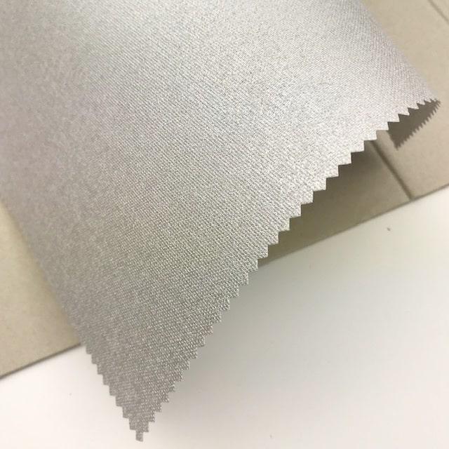 e70109_zilver